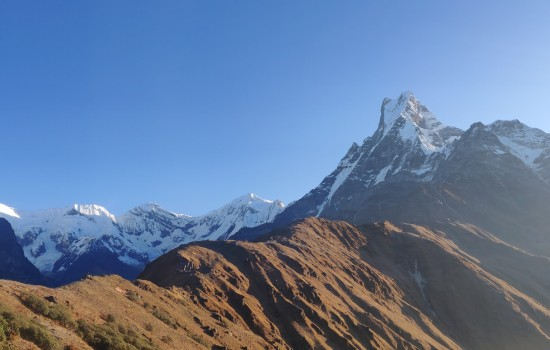 Delightful Mardi Himal Base Camp Trek