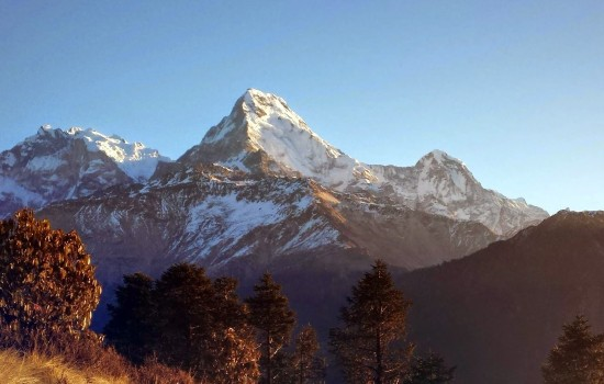 2 Nights 3 Days Shortest PoonHill Trek